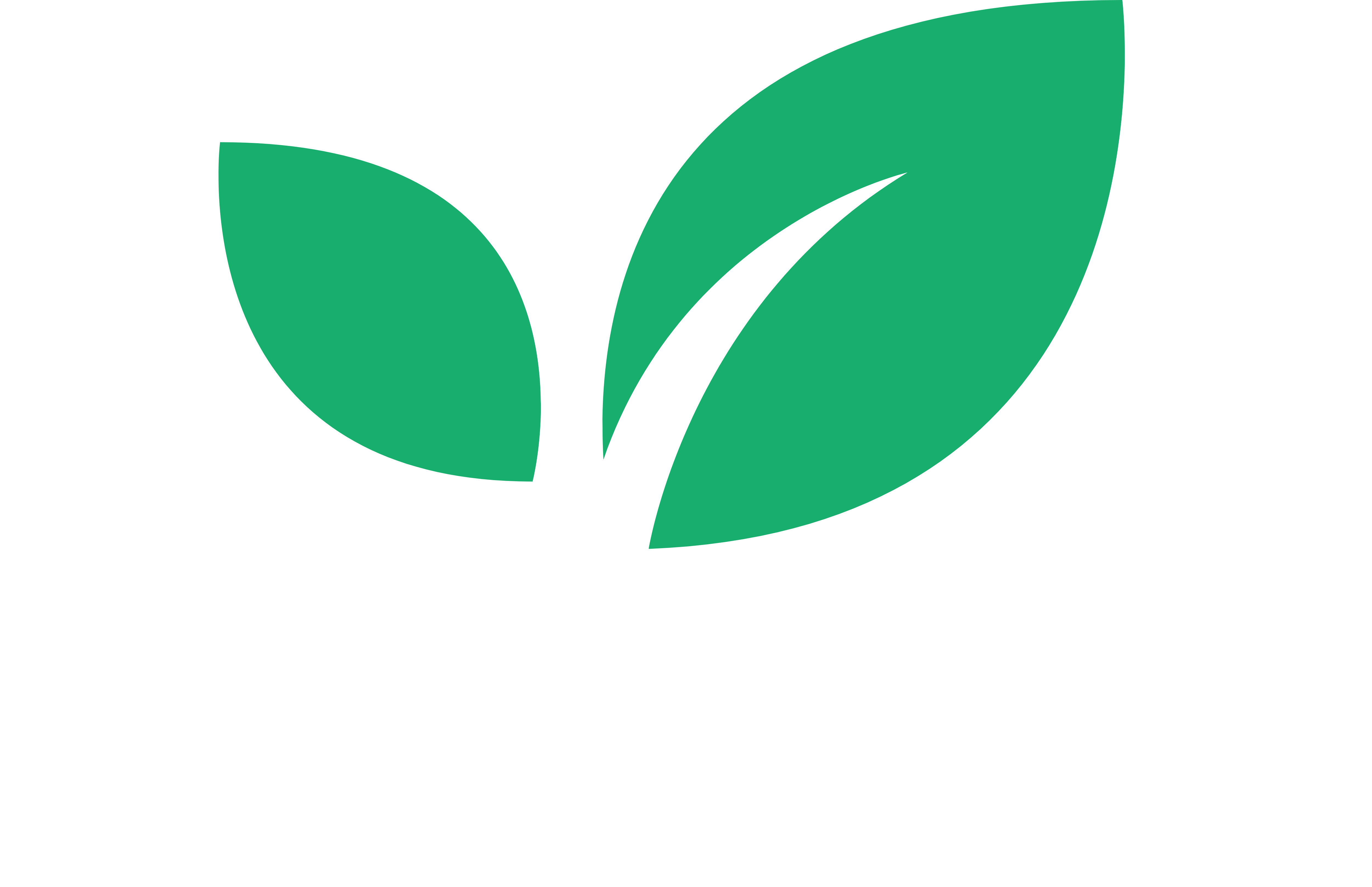 Megaproducts